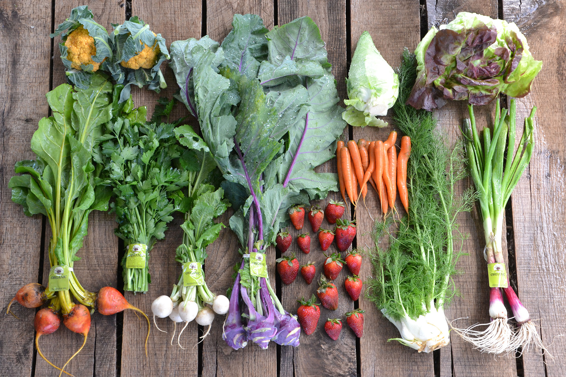 Local CSA Farmers Struggle to Compete Against Meal Kit Services